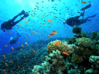 PADI Open Water duikcursus Gran Canaria