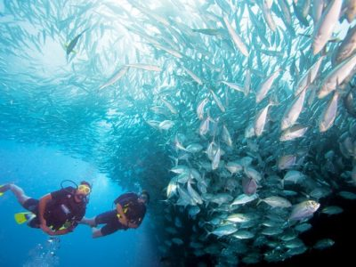 PADI Advanced Open Water Gran Canaria