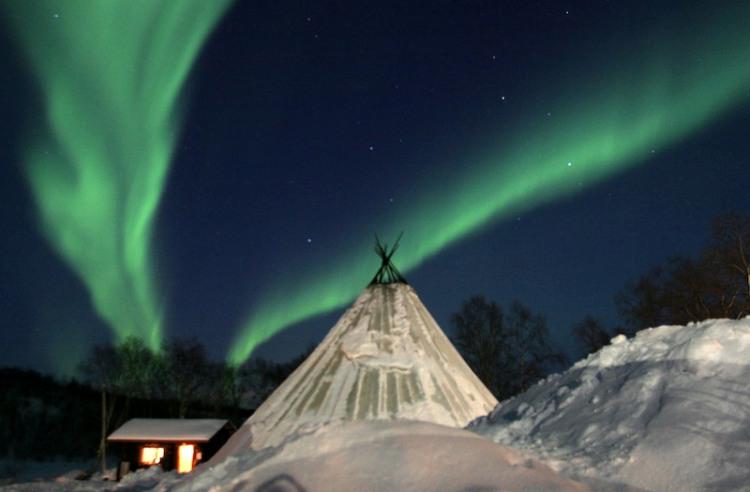 1,5 dag Noorderlicht en hondensledetocht Tromsø