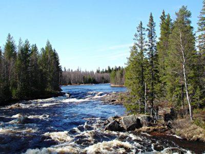 Fjäll Hike Sörsjön Dalarna centraal Zweden