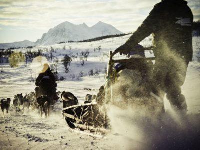 Avond Hondensledetocht Tromsø Noorwegen