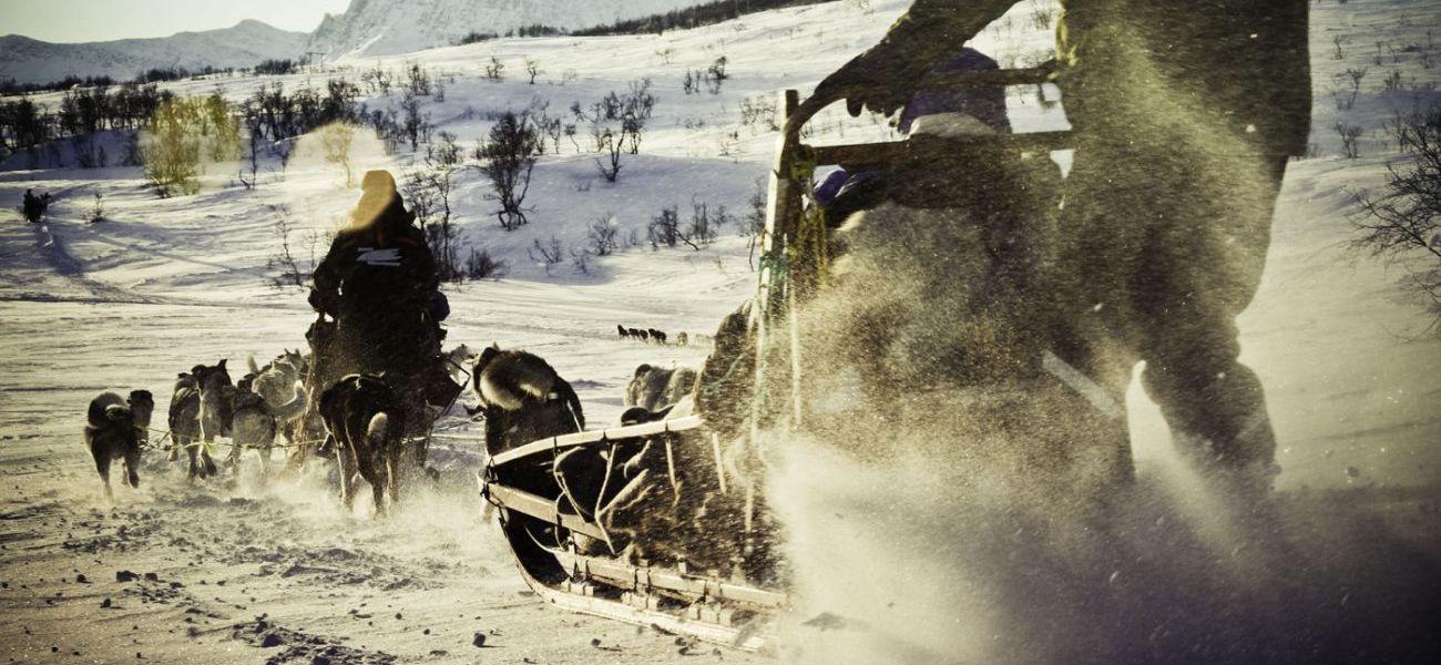 Top activiteiten in Tromso