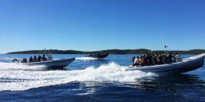 6 eilanden tocht Split Kroatie