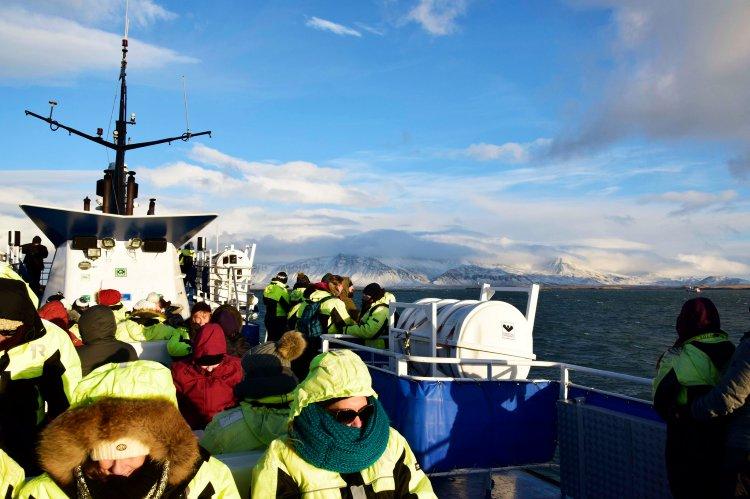 3 uur bootexcursie walvis spotten Reykjavik IJsland
