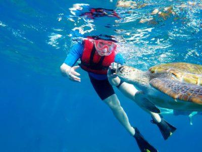 Kajakken en snorkelen met schildpadden en roggen Los Cristianos Tenerife