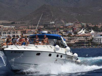 Boottocht en wildlife spotten Costa Adeje Tenerife