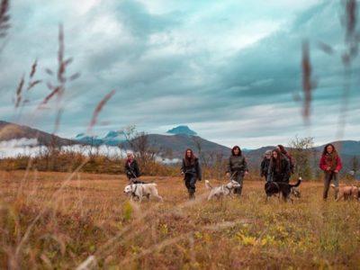 Noorderlicht en Husky Expeditie nabij Tromsø Noorwegen